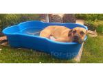 Hundepool in Knochenform Blau 120x80x25cm